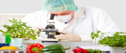 Gli ultimi sviluppi del mercato della certificazione alimentare